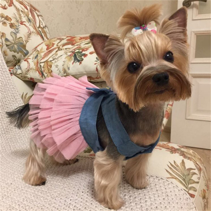 Summer <font><b>Dress</b></font> for <font><b>Dog</b></font> Pet <font><b>Dog</b></font> Clothes Wedding <font><b>Dress</b></font> Skirt Puppy Clothing Spring Fashion Jean Pet Clothes XS-L image