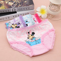 2016 Hot Sale Kids Underwear 2 Pcs/lot Baby Girl Underwear Kids Panties Child's For Shorts For Nurseries Children's Briefs