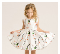 Whosebaby Girls Summer Dress Princess Dress Foreign Trade Upscale Children S Clothing AliExpress A Generation Of