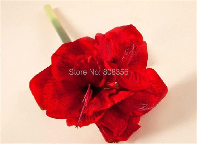 Fake amaryllis silk flowers 70cm2756 length 6p artificial fake amaryllis silk flowers 70cm2756 length 6p artificial hippeastrum clivia whiteredgreen for wedding photograph props in artificial dried flowers mightylinksfo
