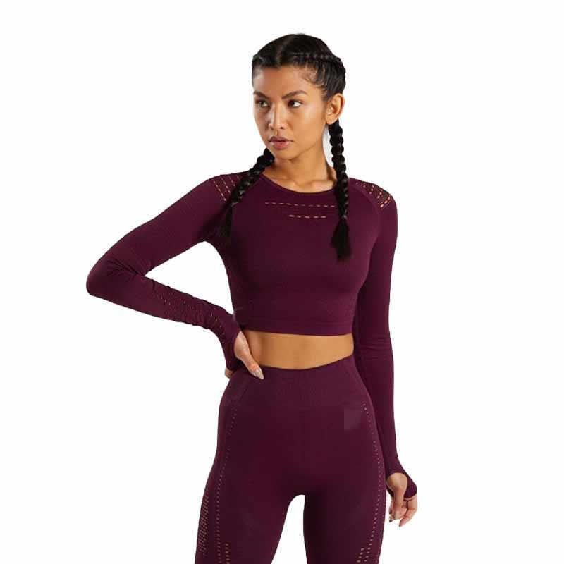 Flawless Knit Energy Seamless Crop Top Fitness Sports Running Active Wear Yoga Shirt Women Seamless Long Sleeve Crop Top Gym