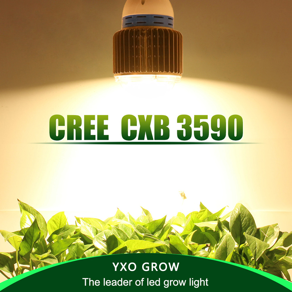 CREE CXB3590 CXB3070 CXA3070 100W 12000LM 3500K COB LED Grow Light Full Spectrum Growing Lamp Indoor Plant Growth Panel Lighting 114w cree cxa3070 cxa 3070 white 5000k warm white 3000k led emitter lamp light with plastic led holder