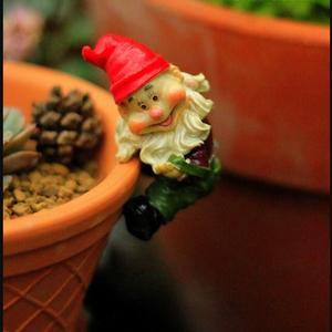 Image 2 - 4pcs לכל סט, גבוהה הוא 6 סנטימטר, מיני כובע גמד עציצי קישוטי זאקה גינון מצרכי טחבי בשרני מיקרו נוף elf