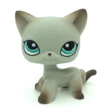 лучшая цена Original Pet Shop Lps Toys Standing Old Short Hair Cat #391 Real Rare Egyptian Grey Blue Eyes Animal kids Collectible Gifts