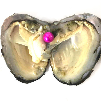 20pcs Single Hot Pink 9-10mm Near Round Edison Pearl with Vacuum Packed Oyster Fresh Pearl in Oyster
