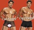 Твердые дизайн мужские брюки * 870 * сексуальная Т-Обратно Стринги Underwear Треугольник брюки Пиджак боксер бесплатная доставка