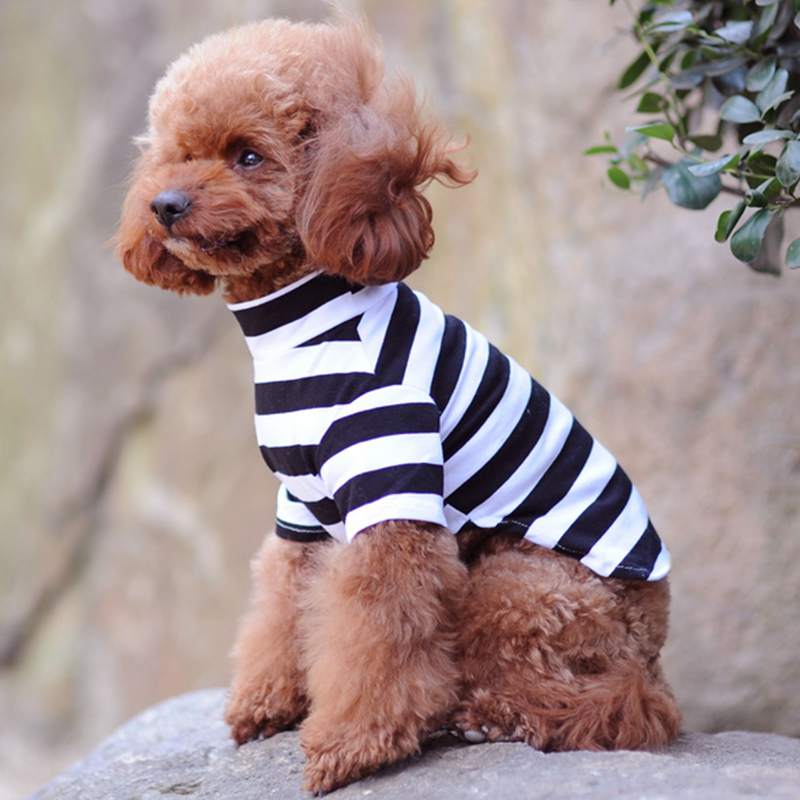 2019 Summer Pet Dog Clothes For Small Dogs Cotton Pet Cat Vest Clothing Pet T Shirt Dog Shirt Chihuahua Costumes 30D