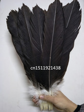 wholesale 100 rare natural big eagle Tail feathers 35 40 cm/14 16 inche decoration Jewelry accessories stage performance diy