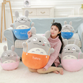 Wholesale  Totoro Plush toys creative egg shape doll 35cm High quality and low price