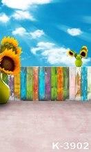 Backgrounds 150CM x 200CM fondos de estudio Blue Sky Backdrops Children Outdoor Background For Photo Studio Spray Painted Photos