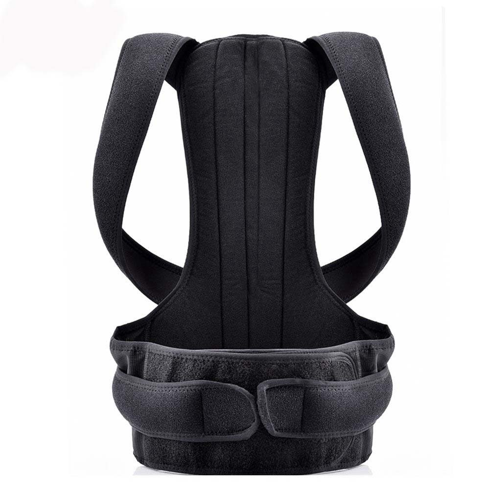 Full Spine Support Pain Relief Belt