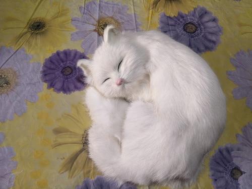 new simulation cat polyethylene & fur lovely sleeping white cat model gift about 24x24cm155new simulation cat polyethylene & fur lovely sleeping white cat model gift about 24x24cm155