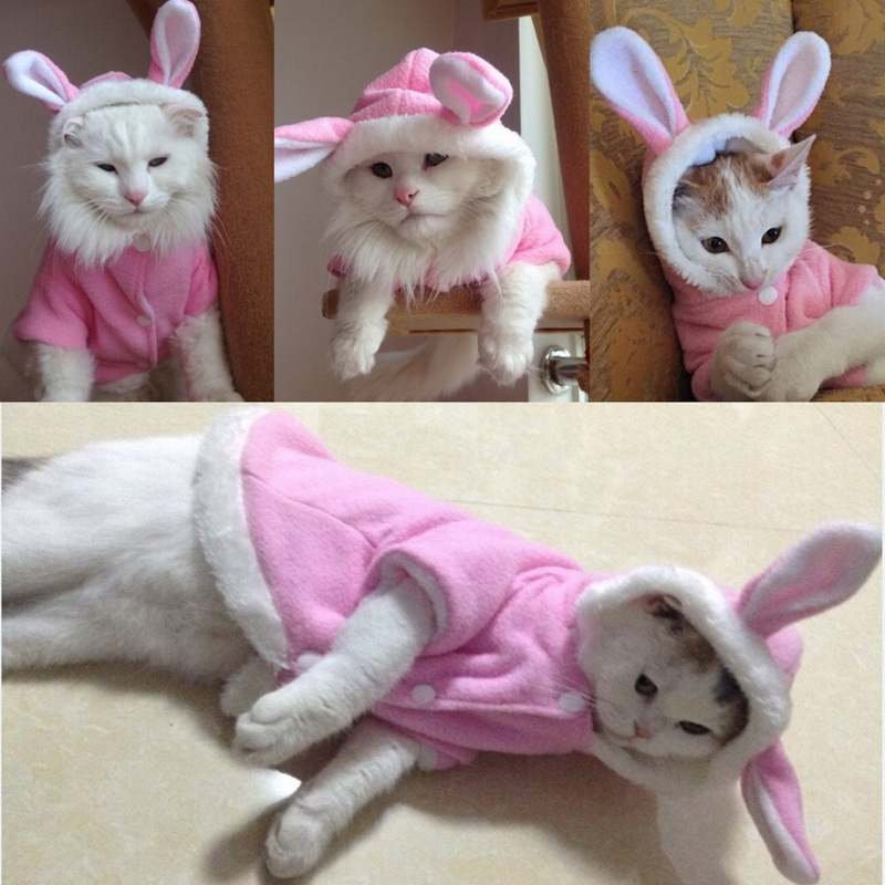 New Winter Cute Pet Cat Clothes Easter Bunny Costume Cat Dog Warm ...