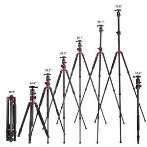 Image 4 - Zomei M8 كاميرا ترايبود Monopod المحمولة المغنيسيوم الألومنيوم حامل ثلاثي القوائم احترافي حامل الإفراج السريع لوحة ل كاميرات DSLR