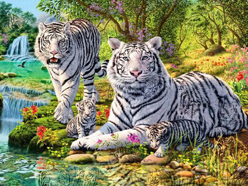 Белый король Тигры Семья поделки алмазов картина животных Алмазная вышивка пейзаж картина из кристаллов Лоскутная мозаика ремесло хобби