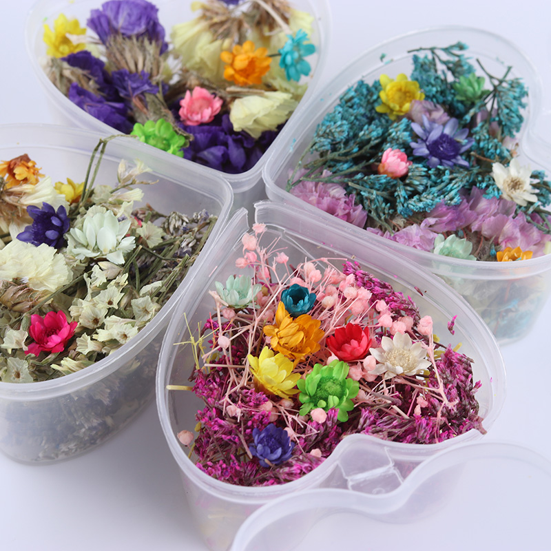 Mixed Dried Flowers Nail Art Decoration Preserved Flower With Heart Shape Box DIY Tips Manicure 3D Nail Art Decoration 10pcs gold 3d rudder metal flower pearl music note mixed rhinestones cross nail art decoration jewelry nails supplies y180 187