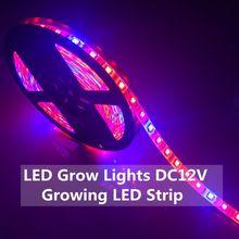 Светодиодный светильник для выращивания растений 5050 Светодиодная лента 5 м DC12V Красный Синий 7:1, 8:1 для теплицы для гидропонного выращивания растений IP20 IP65 свет для роста