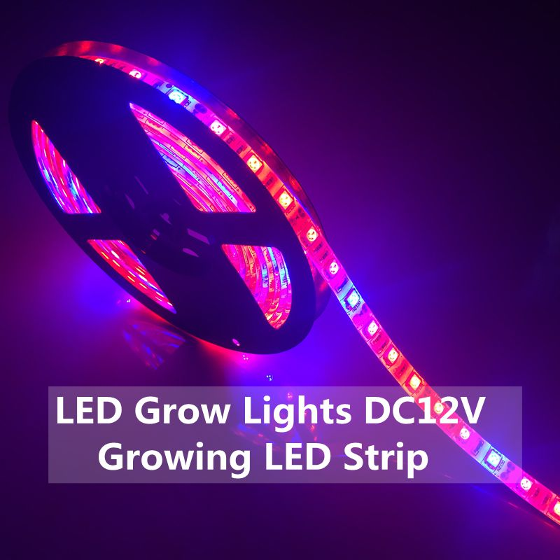 LED Plant Grow Lights 5050 LED Strip 5m DC12V Red Blue 7:1,8:1 For Greenhouse Hydroponic Plant Growing IP20 IP65 Growth Light