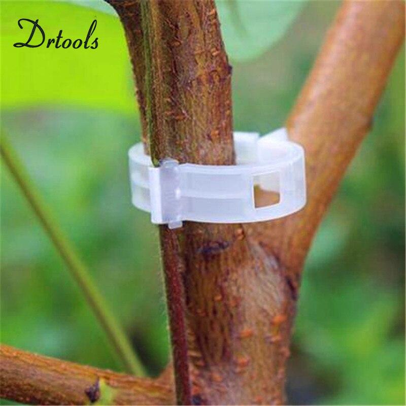 50pcs-pack качество прочный Пластик слинг клипы крепежа лозы растений томата Буш Усик Binder земледелия клип