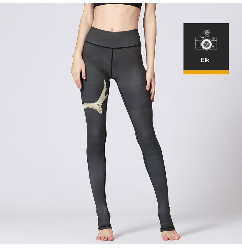 High Quality gym tights