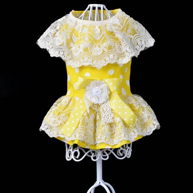 Kleid punkte spitze
