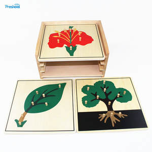 Baby Toy Montessori Botany Puzzle Cabinet with 3 Puzzles Included Learning & Education Math Stick Classic Toys Wooden Toys