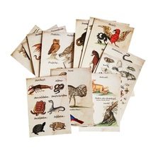16 Pcs/lot New Vintage Animal Postcard Owl Snake Insect Lovely And Ferocious Greeting Card Classic Cards