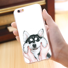 Cute Husky Case For Samsung & iPhone