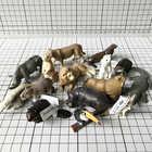 Mini figurine en pvc modèle jouet Simulation animal sauvage jouet ornements modèle Lion de mer rhinocéros 15 pièces/ensemble - 1