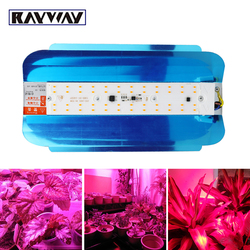 LED Wachsen Licht 50 W 100 W Gesamte Spektrum phytolamp für Pflanzen blume lampe IP65 Wasserdichte 220 V Flutlicht aussaat zelt wachsen box