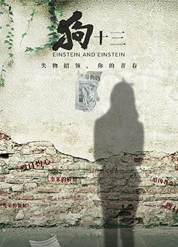 《狗十三》2013年中国大陆剧情,家庭电影在线观看