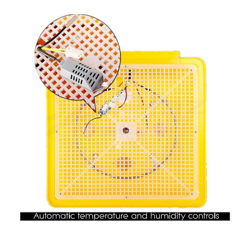 48 uova di Gallina Incubatrice Pollame Automatico di Controllo Digitale della Temperatura di Incubazione Macchina Vassoio di Pollo Chioccia Strumento-in Accessori per alimentazione e abbeveraggio da Casa e giardino su  Gruppo 3