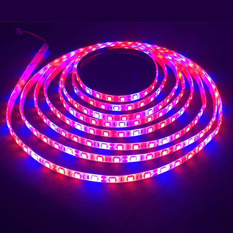 1 2 3 4 5m LED phyto Grow Light LED tape for plants with 2A Power Adapter Indoor grow tent Garden light Flowers Hydroponic lamp in LED Strips from Lights Lighting
