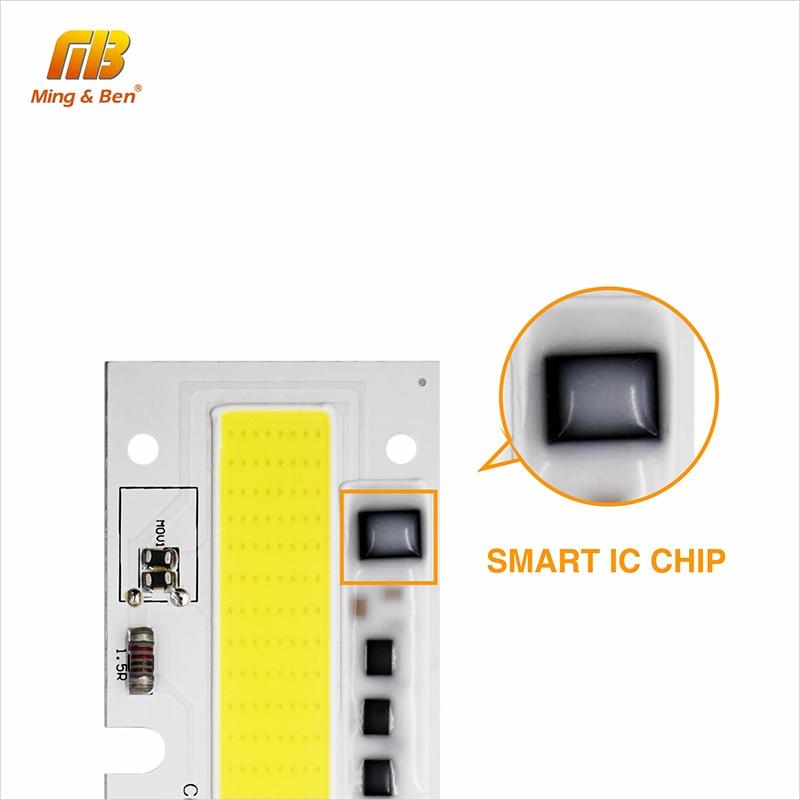 30W 50W 70W 100W 150W 220V 110V IP65 Smart IC - Жарықтандыру керек-жарақтары - фото 5