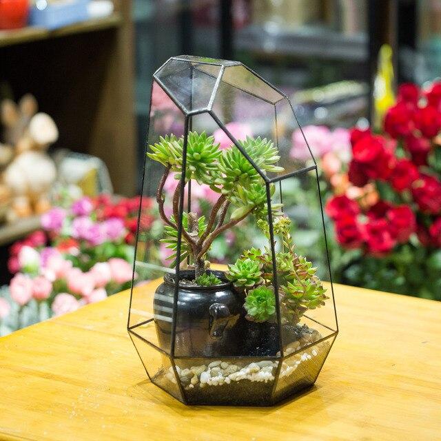 Top 41 cm Grande Irregolare Da Tavolo Piante Succulente Terrario di  ID78