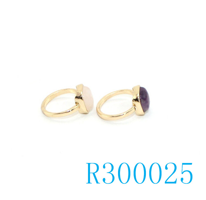 R300025