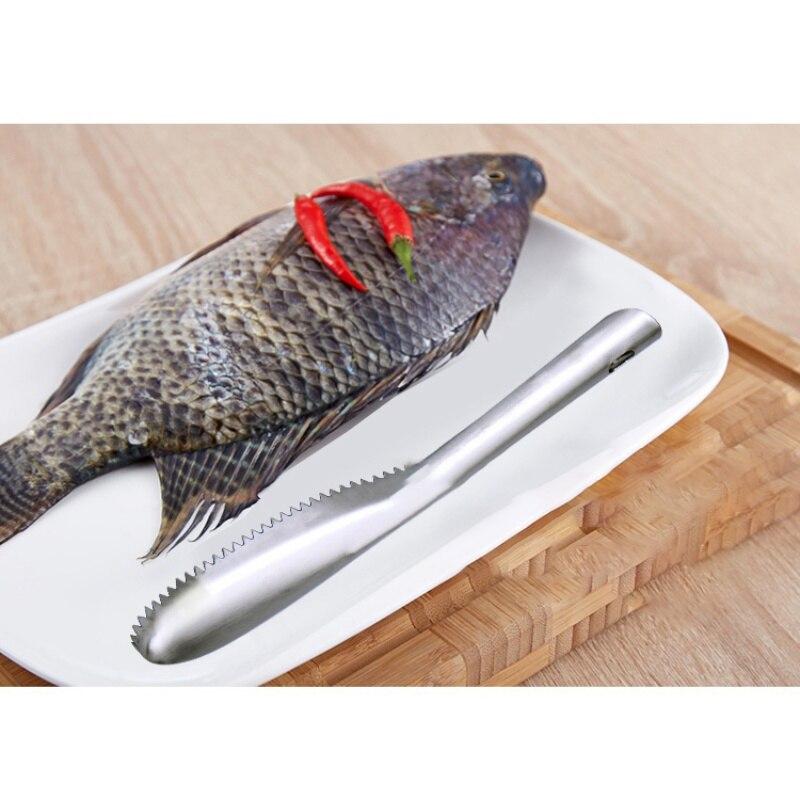 Image 3 - Échelle de poisson raboteuses en acier inoxydable grattoir écailles de poisson brosse outils de pêche en plein air TX005De Pêche Outils   -