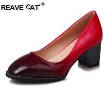 3dff36f9 Zapatos de gato de REAVE Zapatos de Mujer de Color degradado Zapatos de  tacón alto grueso