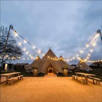 Открытый патио света строки 10 м 33ft G40 Глобусы Освещение с прозрачная колба дворе фонари Винтаж лампы декоративные гирлянды свадебные