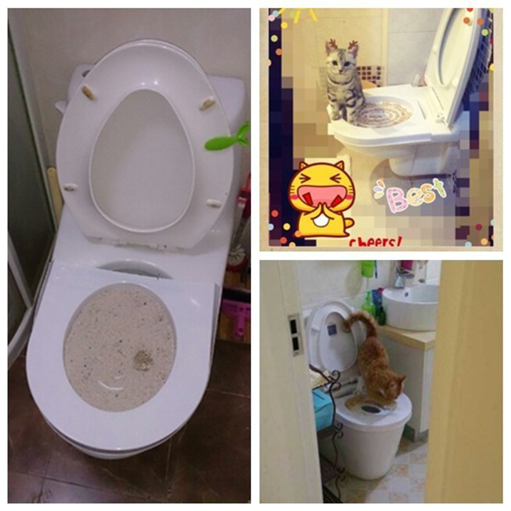 Dog Bathroom Accessories Popular Cat Toilet Seats Buy Cheap Cat Toilet Seats Lots From
