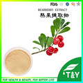 Pure 100% Natural Arbutin Alfa, alfa arbutin pó, extrato de uva-ursina 10:1 300g