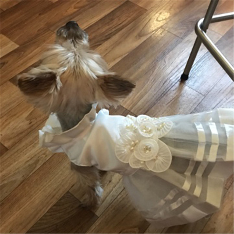 Summer Pet Dog Dress Wedding Dresses Cat Dress Skirt Puppy Clothing Spring Pet Clothes Chihuahua Yorkie Costume3