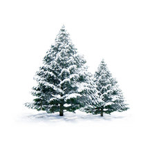 Christmas Tree Clear Silicone Stamp/Seal and Cutting Diesfor DIY Scrapbooking/Photo Album Card Making clear stamps with dies