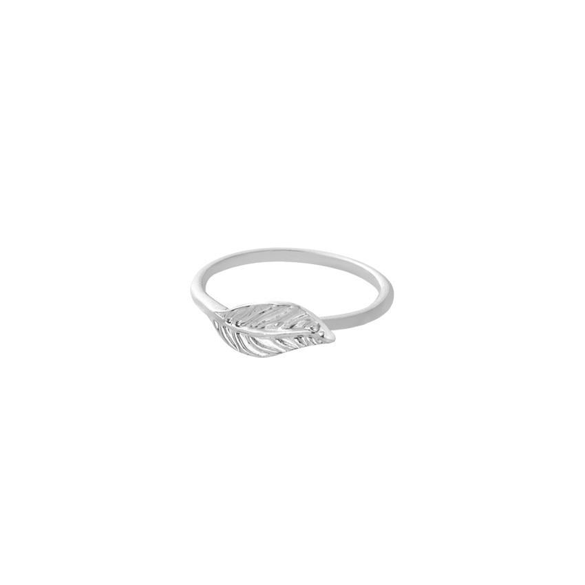 IMG_3779_rings
