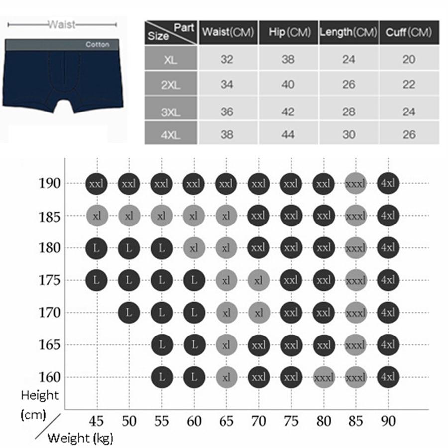 size chart 9909 boxer