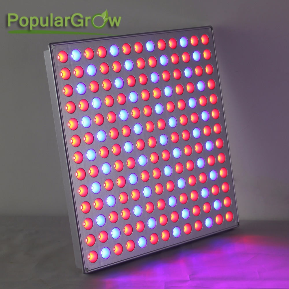 Industrial Led Grow Lights : Populargrow w led grow light panel with red blue