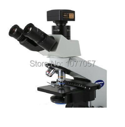 Free shipping,CE,5.1MP USB2.0 Professional microscope digital camera W/C mount , support windows XP/Vista/W7/W8/MAC windows 7 professional x64