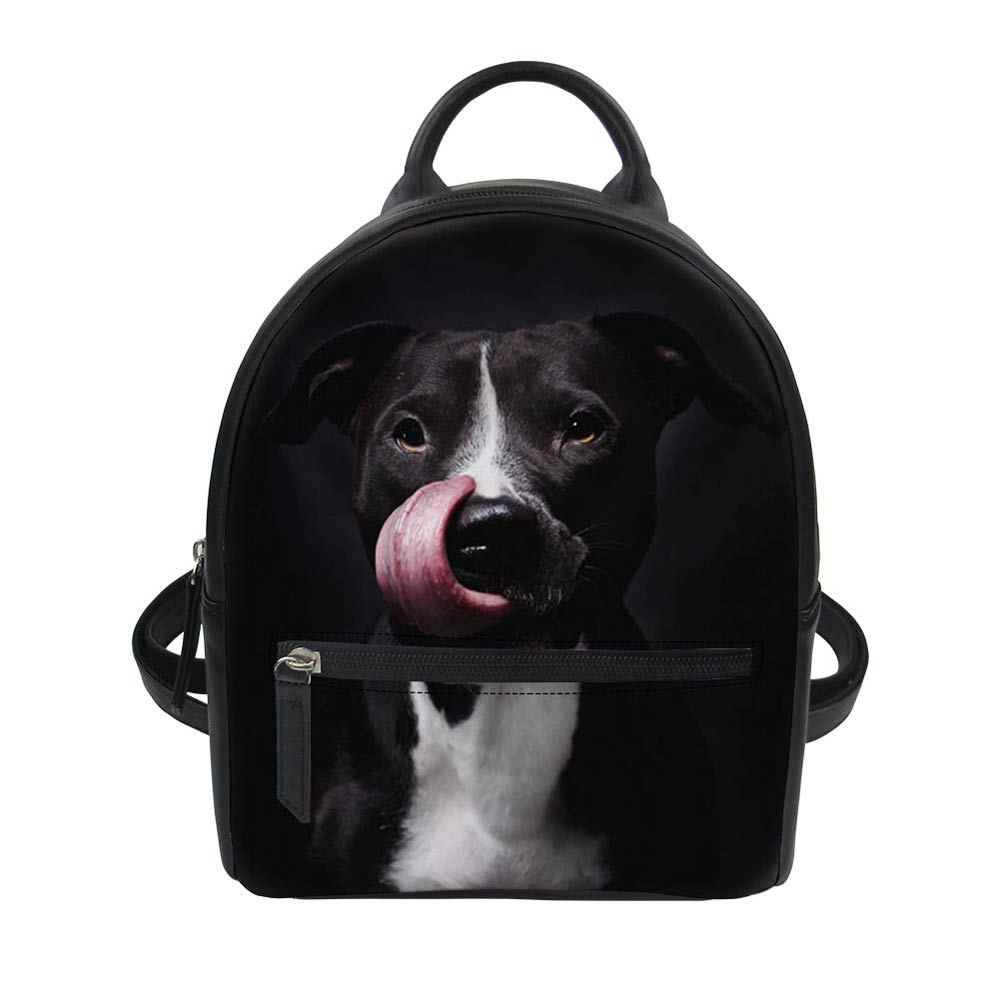 a59b674e156f Detail Feedback Questions about American Staffordshire Terrier Dog ...