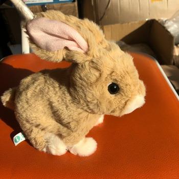 Fajne mini elektryczny zabawki króliczki dla dzieci dla dzieci elektroniczne zabawki pluszowe tanie i dobre opinie Gumy piankowej 5-7 lat 2-4 lat 8 ~ 13 Lat Rabbit 11 cm-30 cm Fantasy i sci-fi Zwierzęta i Natura Sport YHEQUIPMENT take care