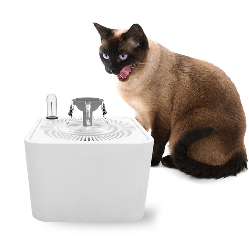 Cat Supplies Pet Supplies Cheap Sale Dadypet Fontaine à Eau Pour Chat Chien Avec Filtre 2l Électrique Et Silencieu